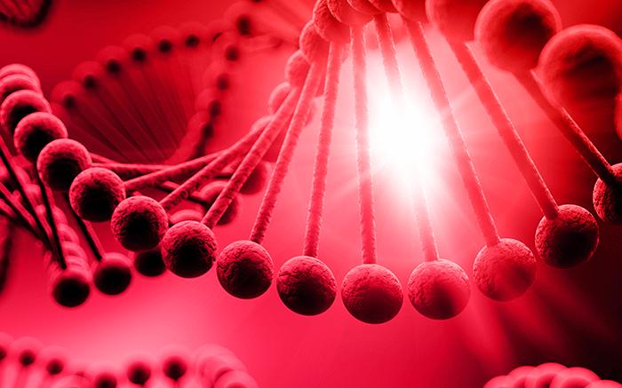Soladis & ses plateformes pour la médecine du futur